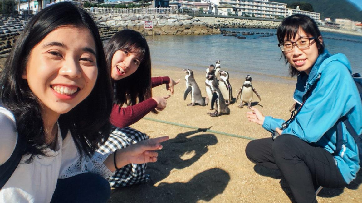 【長崎】親子景點推薦:長崎企鵝水族館,下雨天的長崎景點好去處!(含長崎巴士的詳細交通資訊)
