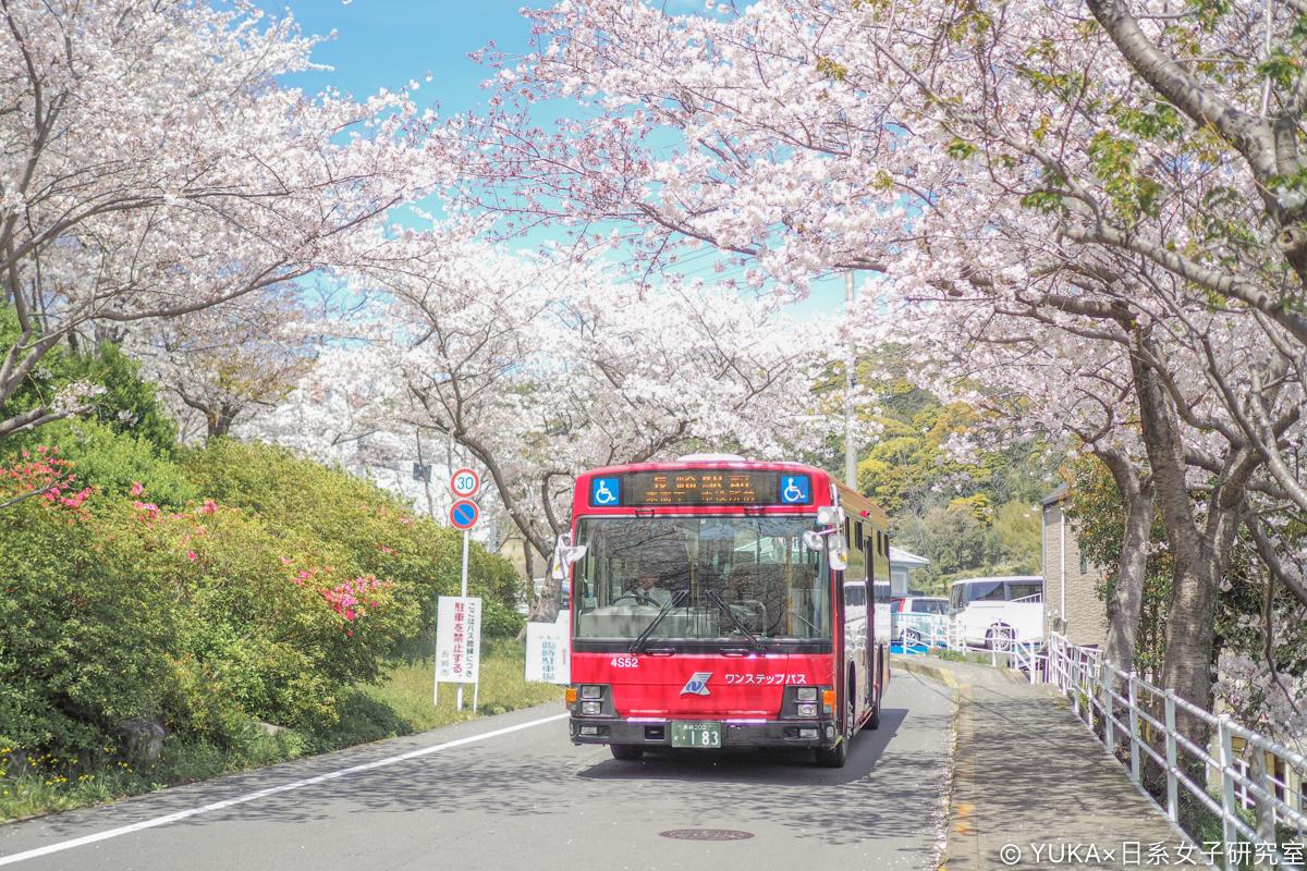 長崎櫻花-立山公園交通巴士