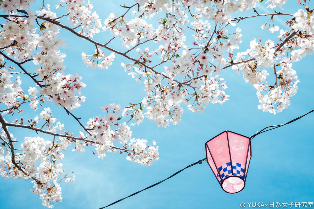 長崎櫻花-立山公園賞櫻