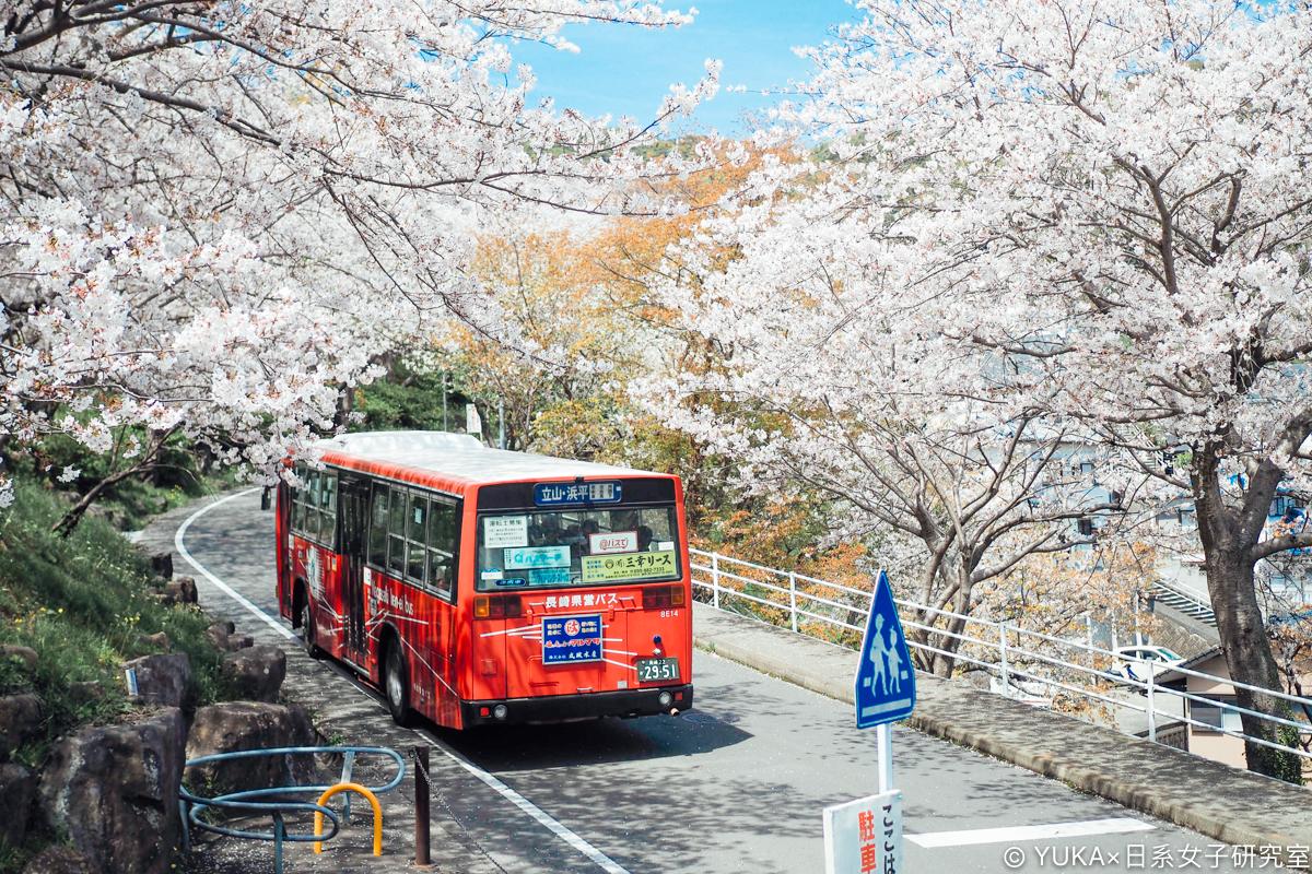 長崎櫻花景點:立山公園賞櫻
